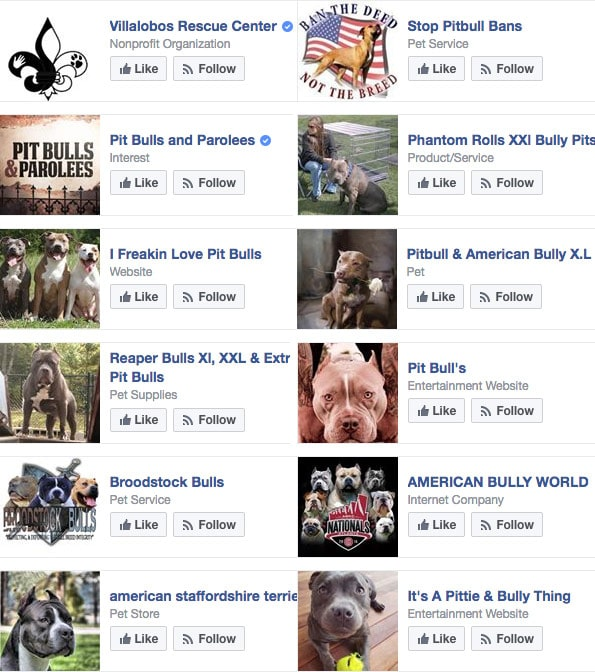 facebook likes, woman killed by her pit bulls