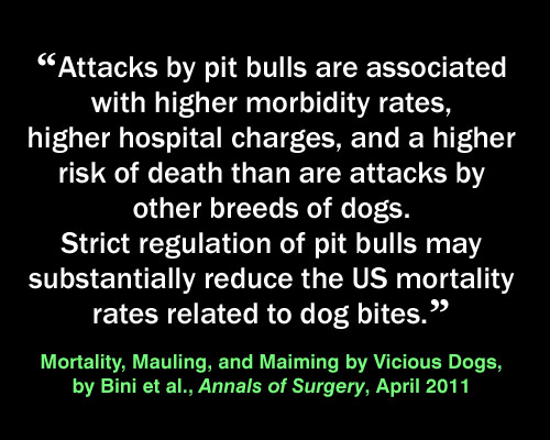 Meme: pit bull injuries, Mortality, Mauling and Maiming by Vicious Dogs