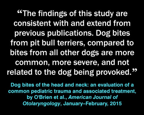 Meme: pit bull injuries, Dog Bites of the Head and Neck: An Evaluation of a Common Pediatric Trauma