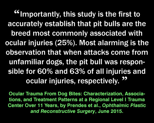 Meme: pit bull injuries, Ocular Trauma From Dog Bites: Characterization, Associations, and Treatment Patterns at a Regional Level I Trauma Center Over 11 Years