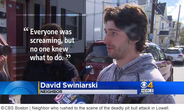 David Swiniarski no one knew what to do during pit bull attack