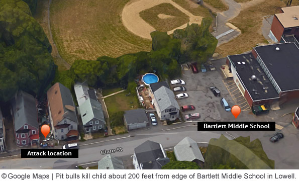 pit bulls kill lowell boy next to bartlett middle school