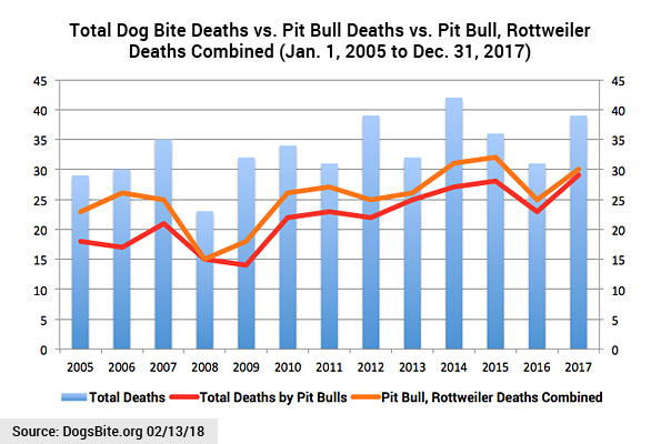 13 years chart dog bite fatality statistics by year, 2005 to 2017