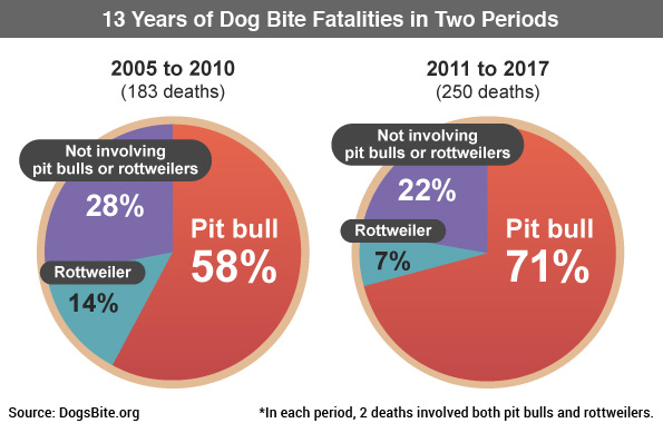 13 years of dog bite fatalities in two periods