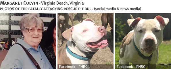 Margaret Colvin fatal dog attack - pit bull, breed identification photograph