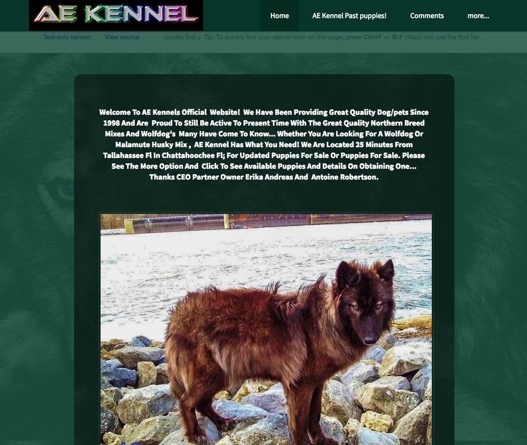 Fatal Wolf-Dog Hybrid Attacks - The Archival Record | DogsBite Blog