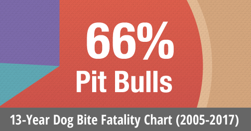 Chart 13-years of us dog bite fatalities statistics, 2005 to 2017