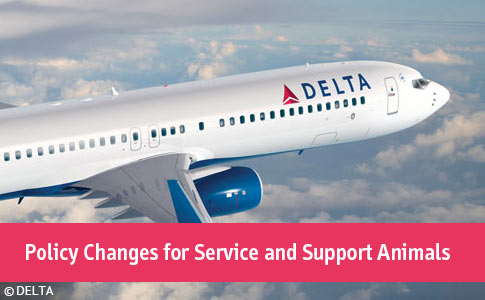 delta policy changes for service and emotional support animals