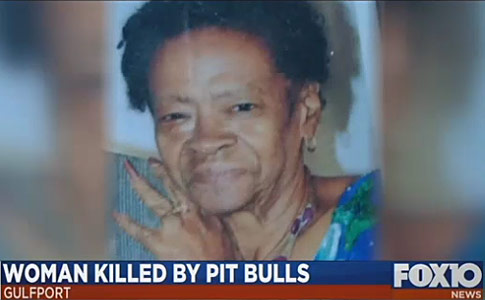 two pit bulls kill woman gulfport mississippi