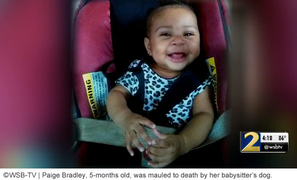Baby Paige Bradly killed by babysitter's dog
