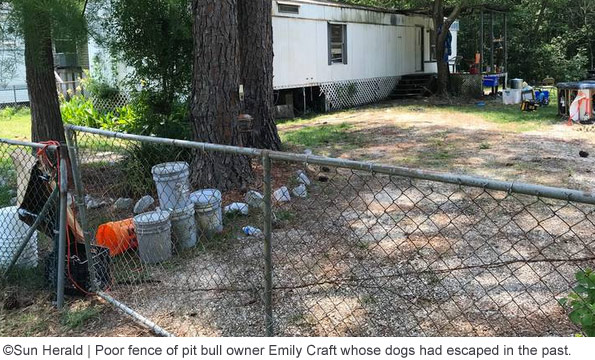 inadequate fencing by pit bull owner emily craft after fatal attack
