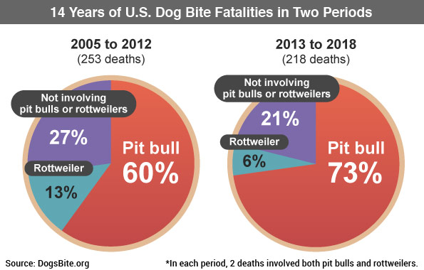 14 years of dog bite fatalities in two periods