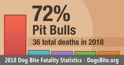 Chart - 2018 dog bite fatality statistics