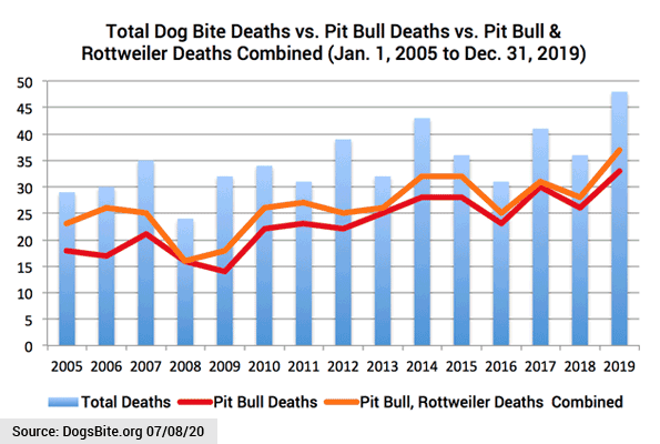 Chart - 15 years dog bite fatalities - pit bulls and rottweilers