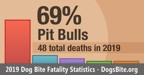 Chart - 2019 dog bite fatality statistics