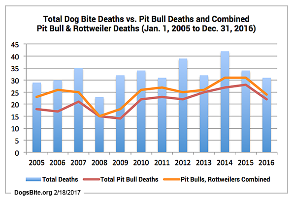 the breakdown between these two breeds is substantial over this 12 year period from 2005 to 2016 pit bulls killed 254 americans about one citizen every
