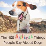 100 silliest things people say about dogs
