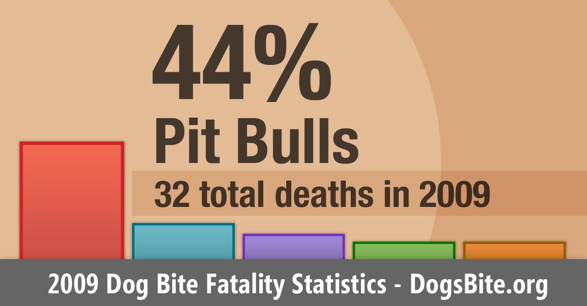 2009 U S  Dog Bite Fatalities - Dog Bite Statistics