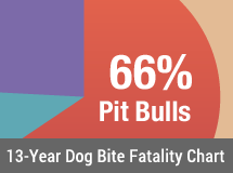 13-Year U.S. Dog Bite Fatality Chart - 2005 to 2017