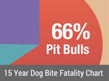 15 Year Dog Bite Fatality Chart 2005-2019