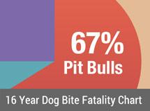 16 Year Dog Bite Fatality Chart 2005-2020
