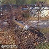 Port huron, fatal pit bull attack, fence area