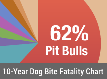 10-Year U.S. Dog Bite Fatality Chart - 2005 to 2014
