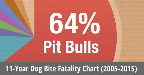 11 year dog bite fatality chart