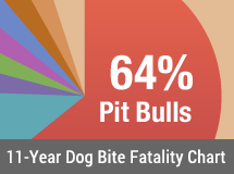 11-Year U.S. Dog Bite Fatality Chart - 2005 to 2015