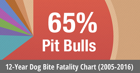 12 year dog bite fatality chart