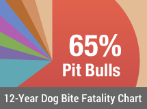 12-Year U.S. Dog Bite Fatality Chart - 2005 to 2015
