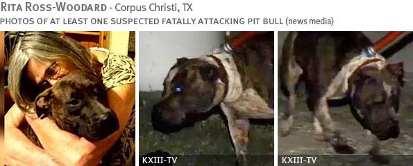 Rita Ross-Woodard fatal dog attack - breed identification photograph