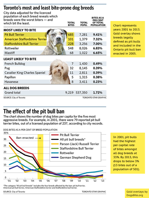 Statistics On Dog Breed Bites