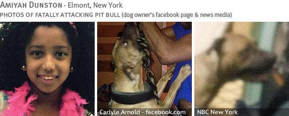 Fatal pit bull attack - Amiyah Dunston