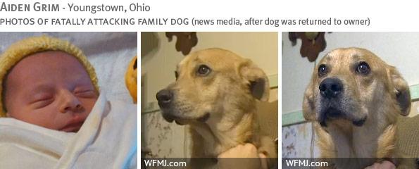 Fatal dog attack - Aiden Grim