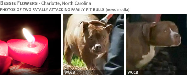 Fatal pit bull attack - Bessie Flowers