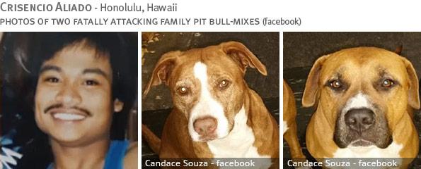 Fatal pit bull attack - Crisencio Aliado