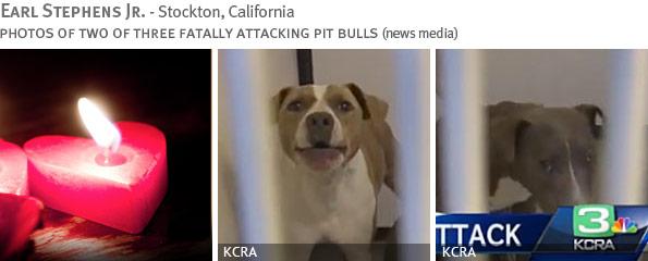 Fatal pit bull attack - Earl Stephens Jr.