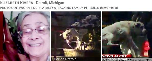 Fatal pit bull attack - Elizabeth Rivera