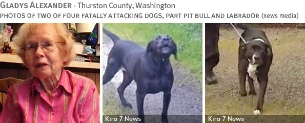 Fatal pit bull-mix attack - Gladys Alexander