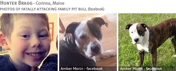 Fatal pit bull attack - Hunter Bragg
