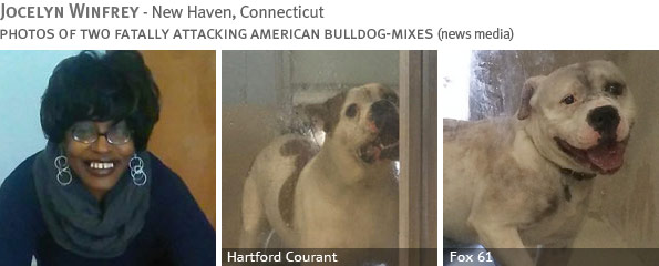Fatal American bulldog-mix attack - Jocelyn Winfrey