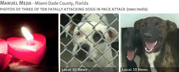 Fatal pack attack - Manuel Mejia