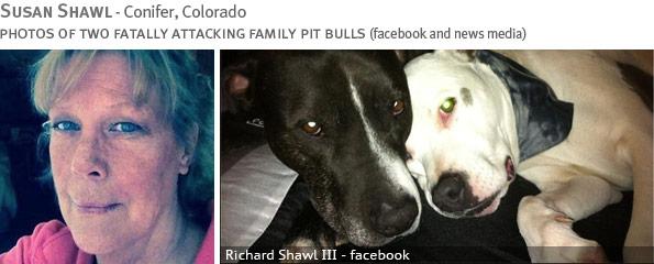 Fatal pit bull attack - Susan Shawl