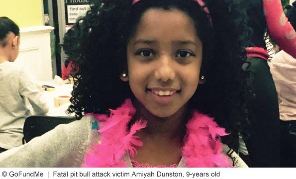 Amiyah Dunston killed by pit bull in long island