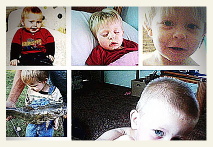 pit bulls killed 4-year old boy in white county, arkansas