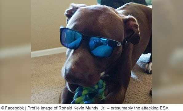 ronald kevin mundys emotional support dog