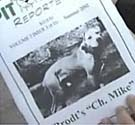 Bill Stewart, dogfighting, suicide, pit bull reporter
