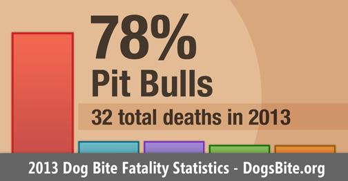 2013 U.S. Dog Bite Fatality Statistics