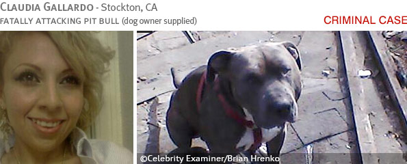 Fatal pit bull attack - Claudia Gallardo photo